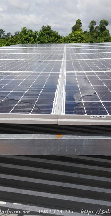 Điện mặt trời An Minh Kiên Giang
