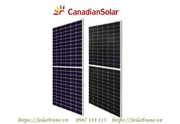 Pin mặt trời lắp trong dự án 1MW Đồng Tháp
